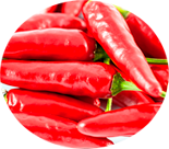 pimenta penigel